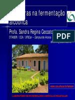 6 Leveduras.pdf