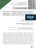 Ghidini & Santos Silva 2011 Ocorrencia Cladoceros Associados Esponjas