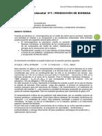 Guia de Prácticas Biotec. Microbiana 2014- I