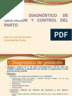 0023523 Diagnostico gestacion
