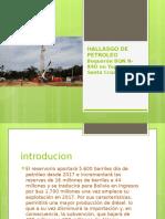 Hallasgo de Petroleo