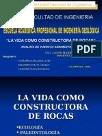 Vida Como Constructora de Rocas