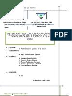 Obtencion y Evaluacion Pulpa Química y Semiquimica de La Especie Schinus Molle