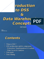 DSS & DWH Concepts