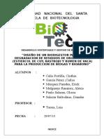 PROYECTO - BIODIGESTOR.docx