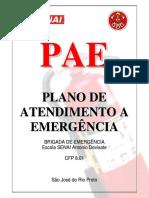 modelo pae brigada de emergência.pdf