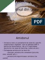 Amidonul Din Grau