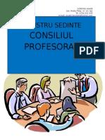 Procese Verbale Sedinte Consiliu Profesoral (2)