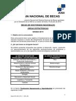 Bases Pos Nac 2014 1 (Doc Ae)
