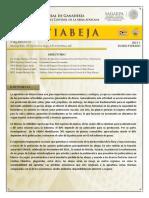 situacion actual en mexico..pdf
