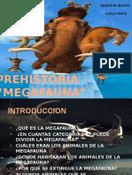 Mega Fauna