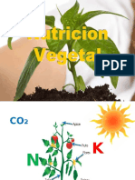 Nutricion Vegetal Power Point
