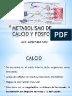 Clase Teórica Metabolismo de Calcio y Fosforo