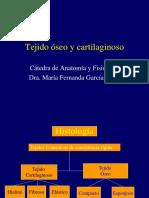 Clase Teórica Tejido Oseo y Cartilaginoso