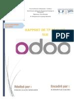 Rapport Des TP (ERP)