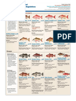 Fish Law