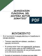 Organ i Zac i on Sistema Motor 08