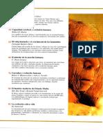 investigacion y ciencia -  los origenes de la humanidad (1).pdf