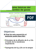 fisiologiadelintercambiogaseosocastroangel-111211201804-phpapp01.pptx