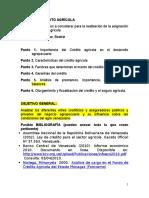 Puntos Para Trabajo de Credito Agricola (1)