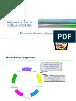 Capítulo IX Elementos comunes  intergración LISTO.pdf