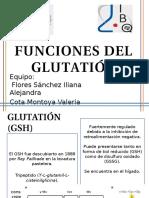 Fuinciones Del Glutatión