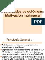 MOTIVACION_INTRINSECA