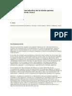 El Mecanismo Reproductivo de La Hierba Guinea Pastos Investigacion