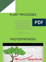 plant processes 2015