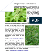 Insecticide Ecologice - Pentru Soc