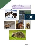 0_1_1_animale_salb._planificare.docx