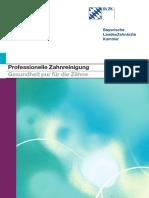 Pzr Blzk Broschuere Und Beilagenblatt