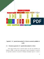 lucrare Disertatie 2011.doc