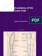 Clinical Anatomy of the Lower Limb Eng 2013
