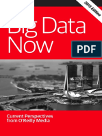 Big Data Now 2015 Edition