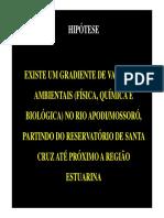 2Aula de Campo 2013.1