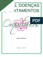 Dicas e Doenças Relacionadas às Orquídeas