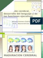 1. Maduración Cerebral, Desarrollo Del Lenguaje