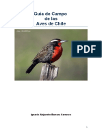Guia de Campo Aves de Chile
