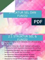 bab2strukturseldanfungsi-130421064422-phpapp01.pptx
