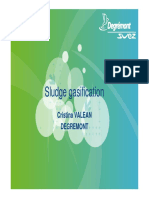 Sludge Gasification