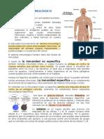 El Sistema Inmunológico