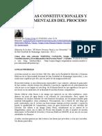 Garantias Constitucionales y Procedimentales Del Proceso Penal