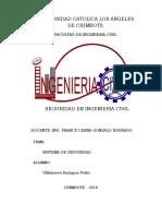 Monografia Seguridad (1)