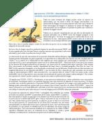 Resumen Infección Por El Virus Dengue Provoca CX3CR1