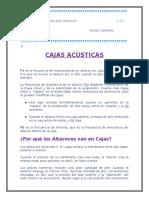CAJAS ACÚSTICA19.docx