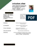 Miguel Meneses Cv