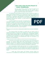 De Una Acción Civil a Una Acción Penal El Límite Visibilizado.