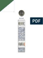 Moneda de Los Contienentes