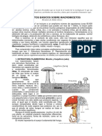 Curso Micologia Basico Completo v2014